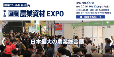 6th_expo